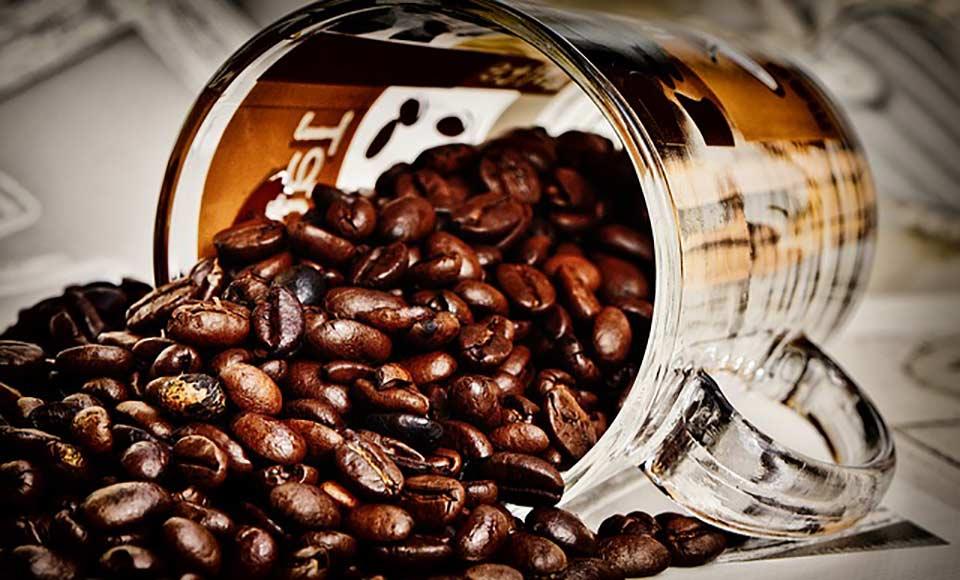 Kafa u zrnu - Mali vodič