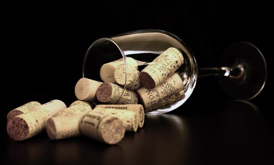 Teorije i zablude o vinu