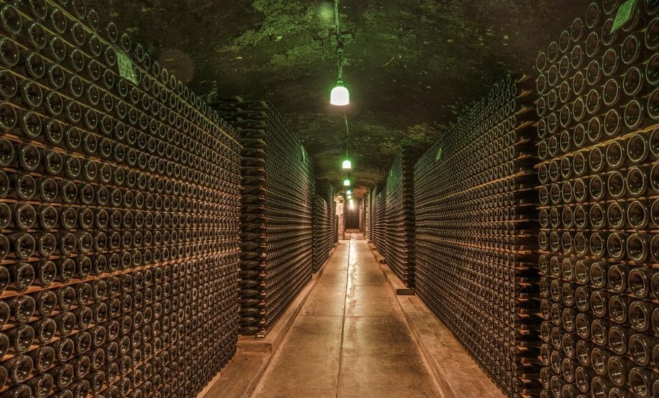 Da li godina berbe utiče na kvalitet vina?