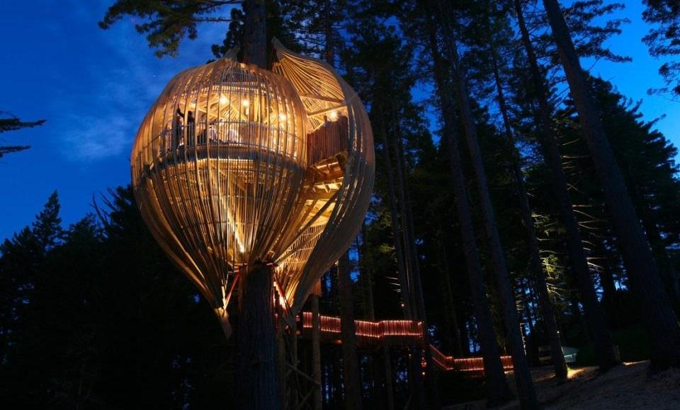 Neobični restorani - The Redwoods Treehouse